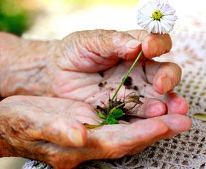 Seniorenbetreuung mit SorglosPflege!